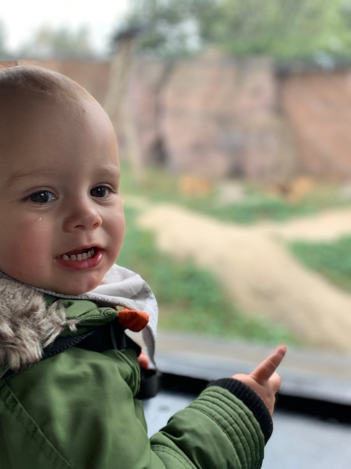 A letter to my little guy at 22months.